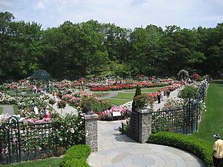 2008-06-15, NYBG012
