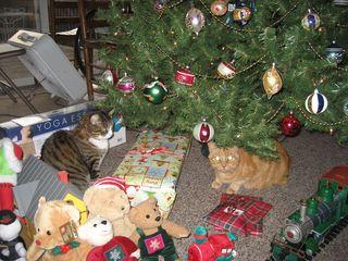 Christmas 2010 002
