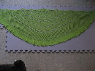 Green Shawl and Harding Scarf 002