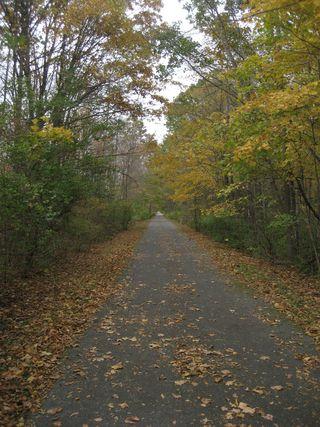 Millerton Rail Trail 064