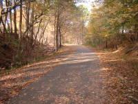 20061016_mohawk_trail_cheshire_trail_cha_2